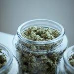 ieud-news-superare-cannabis-con-cannabidolo
